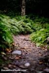 DanaAllenPhoto - Kimmers Trail-7
